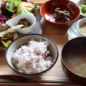 あけみん先生と♪【オーガニックベジランチ・ロースイーツカフェ】ごはんかふぇ豆の木(那須)