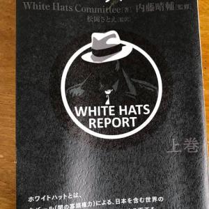 【世の立替え立て直し】DS・カバールの悪事を暴く!「ホワイトハットレポート」が出ましたよ〜!