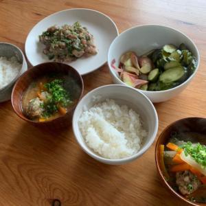 だんなの釣りの釣果 #ポケモンGO #色違い #ポケ森 #新潟 #だんな #魚料理 #美味しい