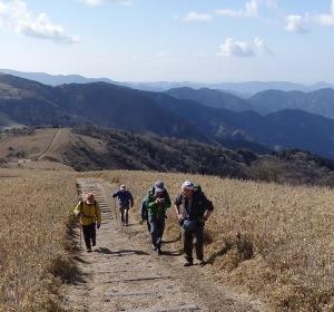 伊豆山稜線歩道での研修
