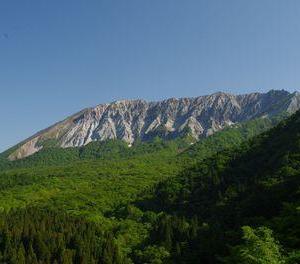 眩しすぎる大山の新緑