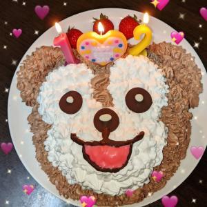 Happy Birthday 流星☆