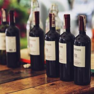 世界の絶品ワインが飲める5か月間!ちきゅう屋・世界のワインを楽しむ会会員募集!