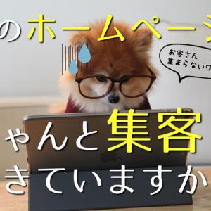 【2/6 八王子】ネット集客の応急処置!3ポイントチューニング