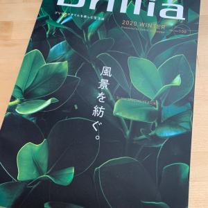 東京建物 Br llia掲載のお知らせ
