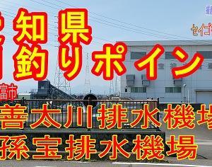 【動画】東海釣りポイント:3本目