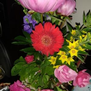 近所の人から花をもらう