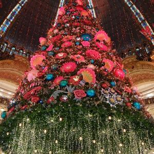 Joyeux Noël *☆ TGVチケット‥