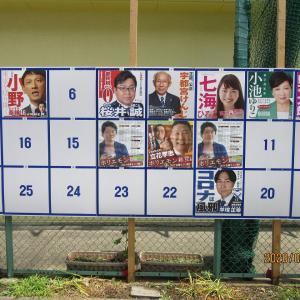 都知事選のポスターを見てきた