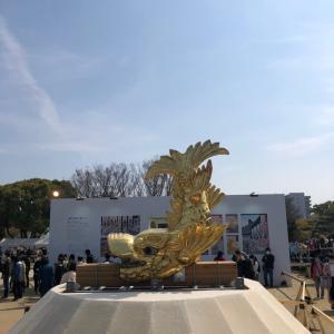 名古屋城のさくら
