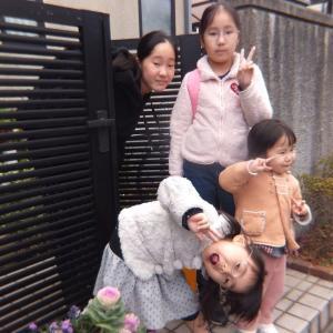 孫姫4姉妹と過ごした令和初の年末年始