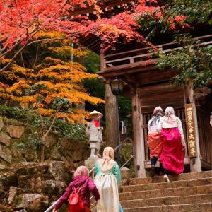 大窪寺がいい紅葉でした