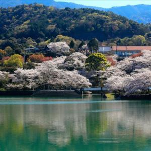 戸川ダム公園と塔重山