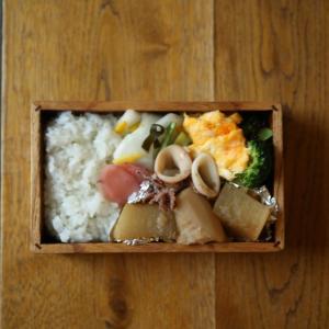 里芋と大根とイカの煮物弁当