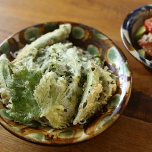 緑の天ぷらそば