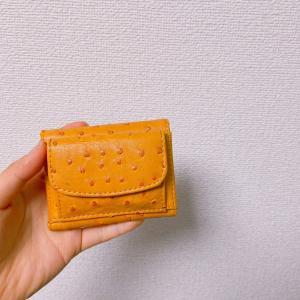 今日捨てたもの「ミニ財布」