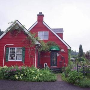 素敵な庭のあるミントハウスへ (廿日市市吉和)