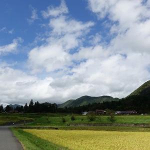 北広島の啄木鳥(キツツキ)のガレットランチ