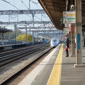久しぶりに新幹線