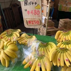えっ!バナナ1房がこの値段❓