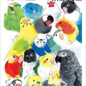 東急ハンズ梅田「インコと鳥の雑貨展」参加します!