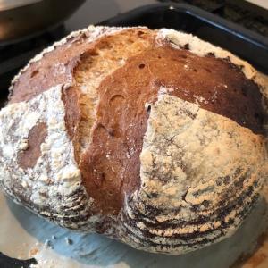 今日のパンは、カンパーニュ