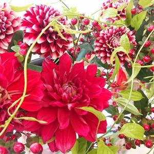 色気のある花