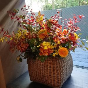 秋の花でイベントを彩る!