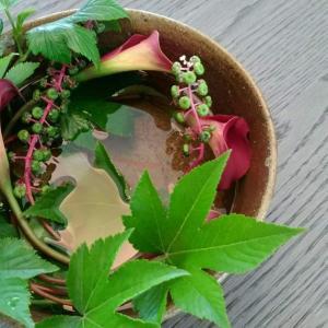 秋の定期活け込み、単発的な花装飾受付中!