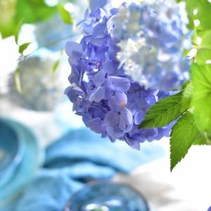 青の花 青の世界