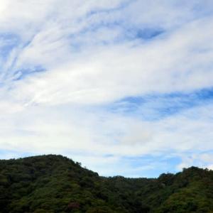 秋雲 才ケ原の森へ