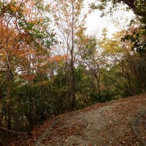 箕面・紅葉の季節へ