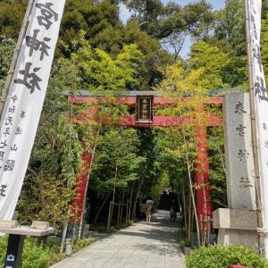 熱海・來宮神社へ
