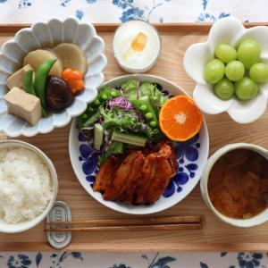 ⋆⋆【コストコ】リピ決定食材とヘビロテ食材 & もう届いたモノ⋆⋆