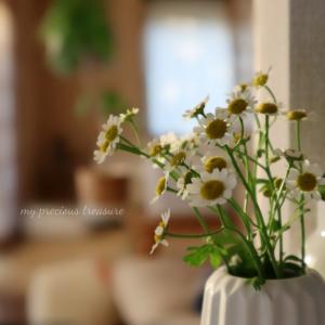⋆⋆【Afternoon Tea】ちいさくてほっこり笑顔になるモノ & ポチレポ続き⋆⋆