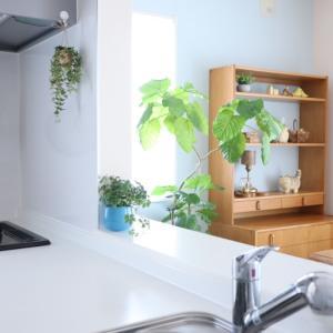 ⋆⋆【キッチンDIY】青から白へチェンジ!やっぱり白が好きだな~ & 8月のお買い物マラソン⋆⋆