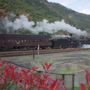 D51200本線復活1周年 SLやまぐち号(その3)