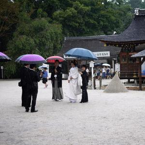 父の京都観光記録 1日目