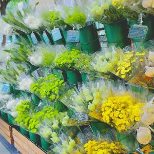 ユニクロで買える1束390円・3束990円のお花°˖✧*