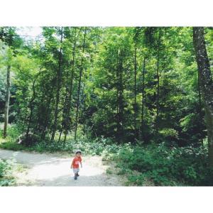 森へGO!