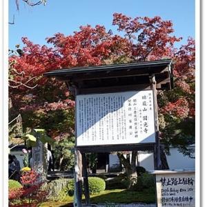 京都紅葉便り 金福寺