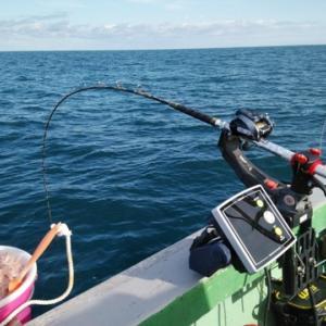 乗っ込みマダイ攻略法 −釣り座の設定編−