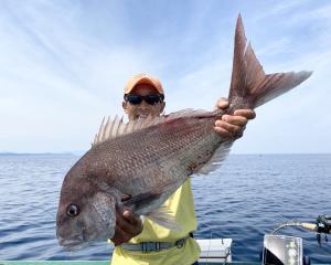 コマセマダイ釣り攻略法  −イメージの重要性編−