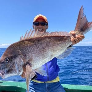 コマセマダイ釣り攻略法  −秋の数釣り到来−