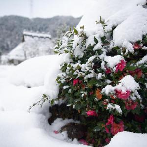 大晦日の雪景色@美山茅葺きの里 其の二