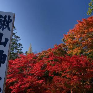 2019京都の紅葉・亀岡 鍬山神社