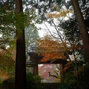 2019京都の紅葉・亀岡 神蔵寺