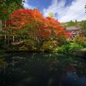 2019京都の紅葉・篠山 洞光寺