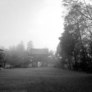 2019京都の紅葉・高雄 神護寺 其の二