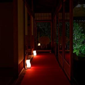 2019京都の紅葉・泉涌寺 雲龍院ライトアップ 其の二